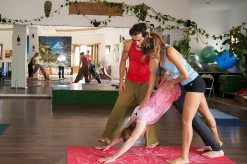 Yoga Asana Alignment Workshop with Balazs Heller